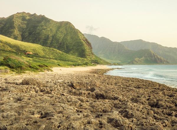 미국 하와이 케아와올라, NSA가 도청하는 광섬유 케이블 육양국